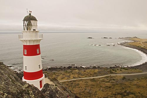 cape palliser lighthouse in New Zealand
